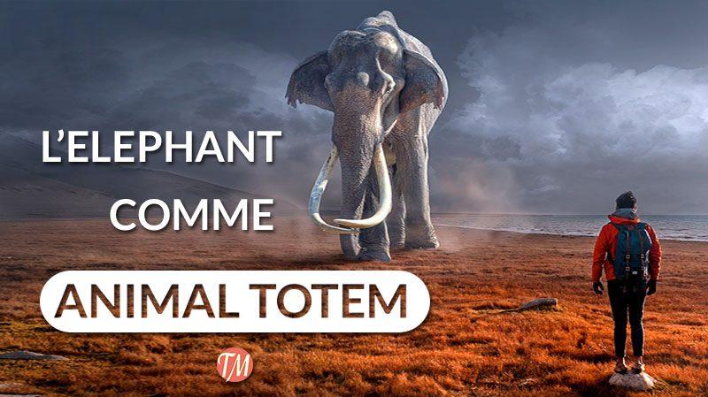 elephant animal totem