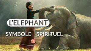 elephant symbole